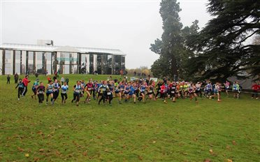 Championnats 77 de cross-country